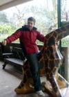 Steve_giraffe